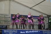 Steinhafenfest 2016_26